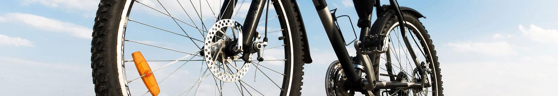 Trekkingbikes - Sport Globe